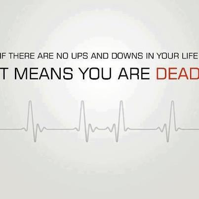 lifes ups and downs Life will always have its ups and its downs all of us will experience both light and trying times the rich and the poor have their own alternating.