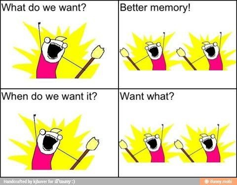 what do we want_better memory