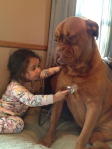 babies-dogs-1