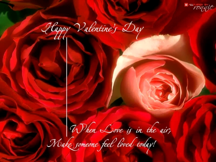 wallpapers-i-love-you-valentines-day-greetings-happy-1152x864