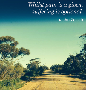 pain vs suffering